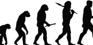 mannen evolutie